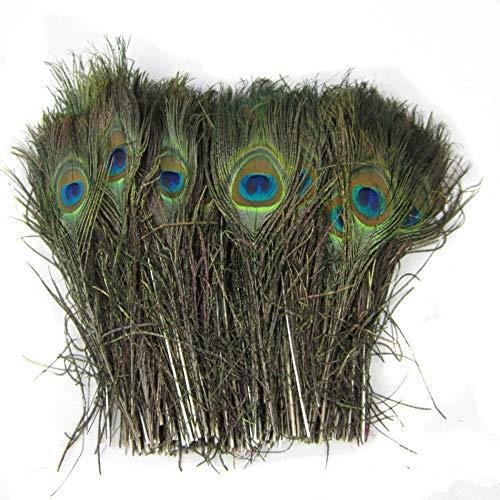 Vektenxi Natürliche Pfauenfedern Pfauenauge Schwanzfedern Natürliche Dekoration für Kunst und Handwerk Heimtextilien Kostüme und Hochzeit 50 Stück (Kunst Stück Kostüm)