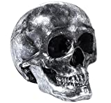 Kare Spardose Skull Antique, 35872, große XL Gelddose Totenkopf, silber (H/B/T) 14,5x13x20cm