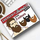 Gift Republic d'urgence Barbe Décoration, Multicolore