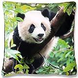 Bestlivings Dekokissen Fotodruck Motiv in 40x40 cm, Flauschig Weiches Kissen in Vielen Motiven erhältlich (Design: Panda)