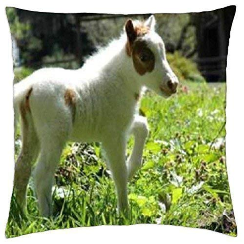 yiyuanyuantu Horsey in Field - Throw Pillow Cover Case 18