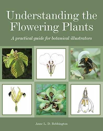 Understanding the Flowering Plants: A Practical Guide for Botanical Illustrators (English Edition) -
