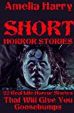 SHORT HORROR STORIES BOOK: 22 Real Life Horror Stories That Will Give You Goosebumps (English Edition)