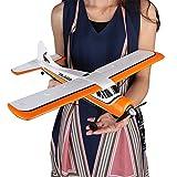 LanLan Toy XK A600 XK-A600 5CH 2.4G Moteur Brushless 3D6G RC Avion