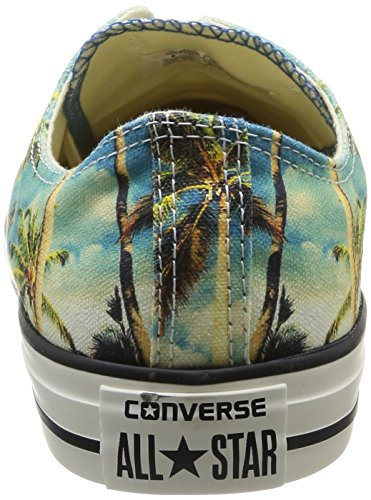 Converse All Star Ox Graphics Unisex-Erwachsene halbschuhe Tropical