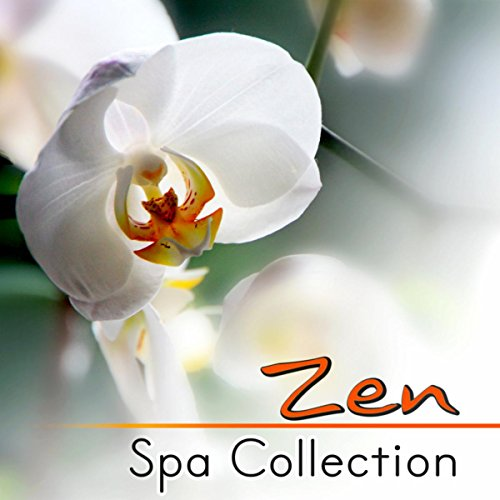 Now and Zen (Red Dragonfly) -