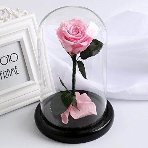 HOOM-Ewige Blumenornamenten Rose Glas Maske's Freundin Valentinstag Geschenk, Rosa