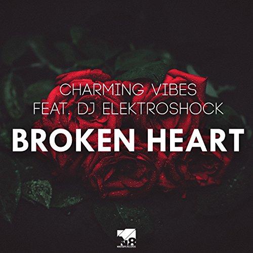 Charming Vibes feat. DJ Elektroshock-Broken Heart