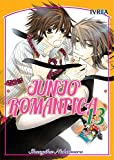 Junjo Romantica 13 (Comic)