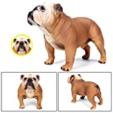 Eruditter Großes England Bulldog Modell Kinderspielzeug