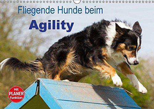 Fliegende Hunde beim Agility (Wandkalender 2018 DIN A3 quer): Aktive und bewegungsfreudige Hunde bei einer der Ausübung einer modernen Hundesportart ... [Kalender] [Apr 01, 2017] Scholze, Verena