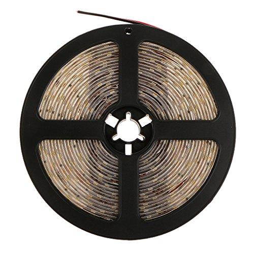 Tira LED Flexible Impermeable de Luz Lámpara 300 LEDs 5m SMD 3528 Varios colores - Blanco cálido