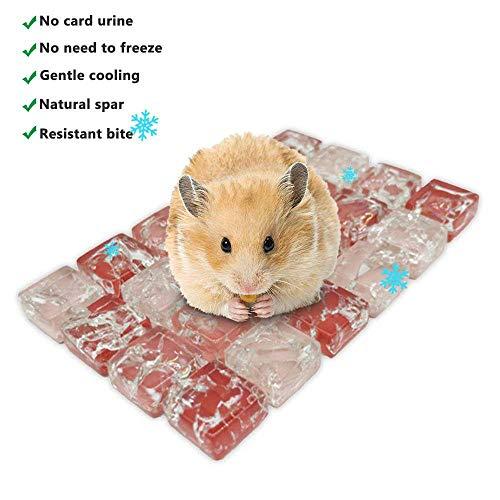 Volwco Haustier Kühlmatte Kleintier-Kühlmatte Faltbarer Natürlicher Spar Sommer Schlafsack Stabiles Sticky On Breathable Mesh Für Meerschweinchen Hamster Kaninchen Chinchilla(Rot,XS) -