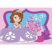 Tejedores asociadas 620010 - Alfombra de poliamida, sujeto: Sofia Princess y el castillo (el dibujo animado de Disney), 133 x 2 x 95 cm, color: rosa