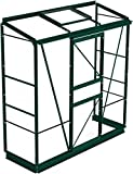 Simplicity Mini Lean-to Greenhouse 2ft2 x 6ft3 Plain aluminium Horticultural glass (Green, 2ft2 wide (667mm) x 6ft3 long (1910mm)