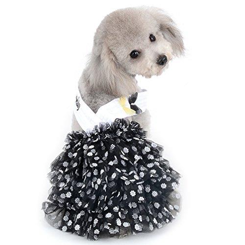 Halfter Prinzessin Kleid für kleine Hunde Girl Polka Dot Chiffon abgestuftes Rock Puppy Kleidung (nur für kleine Haustiere) ()