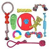 Ensemble Lot de 10 de jouets pour chien, durables mâcher corde jouet solitude petits et moyens chiens santé