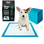 SmugPets 100 Premium Dog & Puppy Training Pads - Super Absorbent 6 Layers for Quick Dry, Odor Elimination & Anti Bacterial with Pheromones for Fast Housebreaking – Large Puppy Pads - 60cm x 60cm