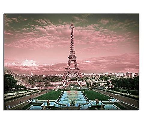 Tableau déco plexi aG5705000477 70 x 50 cm (rose/paRIS/5 mm