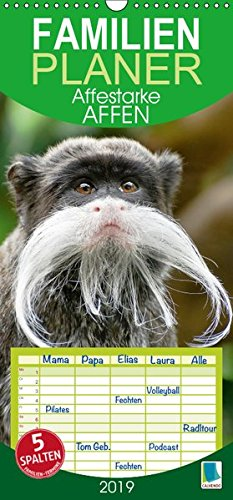 Affenstarke Affen (Wandkalender 2019 PRO_49_format hoch)