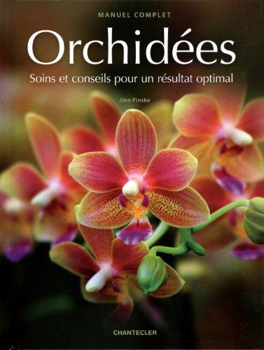 Orchidées : Soins et conseils pour un résultat optimal