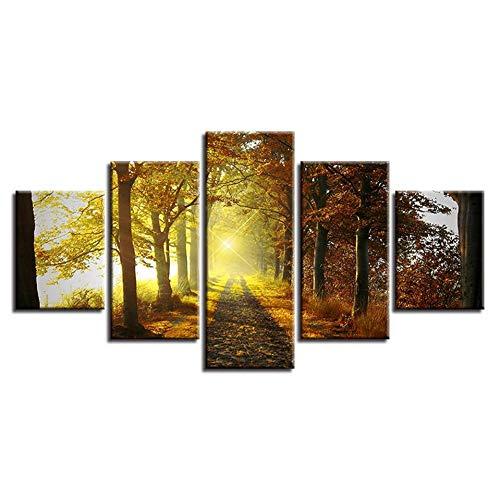 HUDEHUA Leinwand Malerei Wandkunst Dekoration 5 Stück Waldweg Sonnenschein Landschaft Poster Bilder Für Wohnzimmer Rahmen (Leinwand Malt)