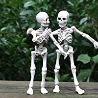 Runrain Movable Mr. Bones Skeleton Human Model Skull Full Body Mini Figure Toy Halloween