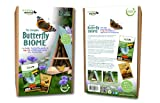 Wildlife World Butterfly Biome Including Top 10...