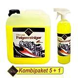 6 Liter ProMax Profi Felgenreiniger Konzentrat mit Sprühkopf, Bremsstaubentferner KOMBIPAKET