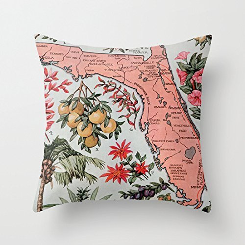 age Map of Florida Decorative Throw Pillow Case Cushion Cover ()
