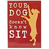 "Awkward Family Photo, Dog is Good, 3"" X 2"", Officially Licensed - MAGNET magnete - Your Dog Doesn't Know Sit Strong Gripping MAGNET magnete"