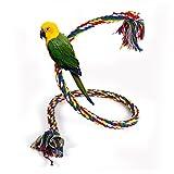 Giocattolo di pappagallo Corda piccola Uccello da compagnia appeso...