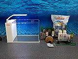 Aqua Orion 40 in weiß Nano Aquarium Komplettaquarium inkl Dekoration LED