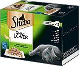 Sheba Adult Katzen-/Nassfutter Multipack, für Erwachsene Katzen Sauce Lover in Sauce, 72 Schalen (6 x 12 x 85 g)