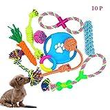 Abseed 10 Teile Hundespielzeug Kauspielzeug Set Haustier Hund Seil Spielzeug Set Interaktive Baumwollknoten Spielset für Hunde (10#1)