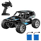 Diza100 Remote Control Car,1:18 Scale 2WD RC Car Off Road Vehicle 2.4GHz Radio