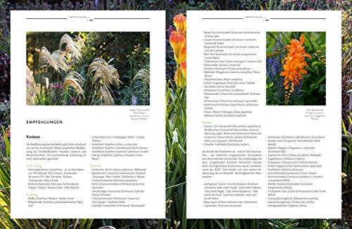 Verrückt nach Garten: Ideen und Erfahrungen kreativer Gärtner - 6