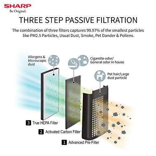 Sharp FP-FM40E-B 33-Watt Air Purifier (Black)