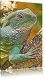 großes grünes Chamäleon Deluxe Format: 120x80 cm auf Leinwand, XXL riesige Bilder fertig gerahmt mit Keilrahmen, Kunstdruck auf Wandbild mit Rahmen, günstiger als Gemälde oder Ölbild, kein Poster oder Plakat
