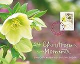 24 Christrosen-Momente: Ein Postkarten-Adventskalender