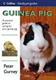 Guinea Pig (Collins Family Pet Guide)