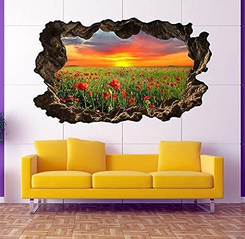3D Wandtattoo Blumen Feld Mohnblume Sonne Wandbild Wandsticker selbstklebend Wandmotiv Wohnzimmer Wand Aufkleber 11E613, Wandbild Größe E:ca.