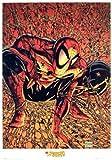 Spider-man-web-motif comic poster 61 x 91,5 cm