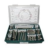 Sortiment M10 DIN 603 Edelstahl A2 (V2A) Flachrundschrauben mit Vierkantansatz (Schlossschrauben) - Set bestehend aus Schrauben, Unterlegscheiben (DIN 125, 127, 9021) + Muttern (DIN 934, 985) - 144 Teile