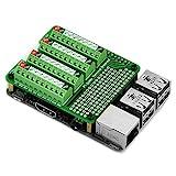 Electronics Salon, breakout board modulo per Raspberry Pi