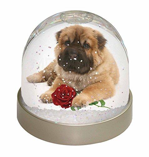 Pei Dome (Shar Pei Hund mit roten Rose Schneekugel Globus Wasserball Tier Weihnachtsgesche)