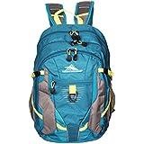 High Sierra 33 Ltrs. Charcoal Green Laptop Backpack