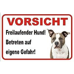 """Schild Vorsicht American Pit Bull Terrier""""Freilaufender Hund"""" 15x20 oder 20x30 (20x30cm)"""