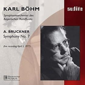 Bruckner : 7ème Symphonie - Page 2 51ZNHXlR30L._SS280