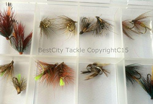 Irische Nassfliegen, 16-er Set in gratis Fliegenbox, Größen 10–14,Forellenfliegen in ausgezeichneter Qualität